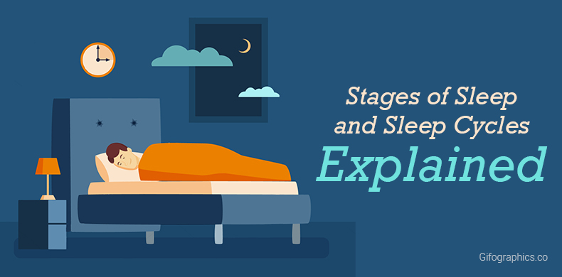 Stages of Sleep and Sleep Cycles Explained [Infographic]
